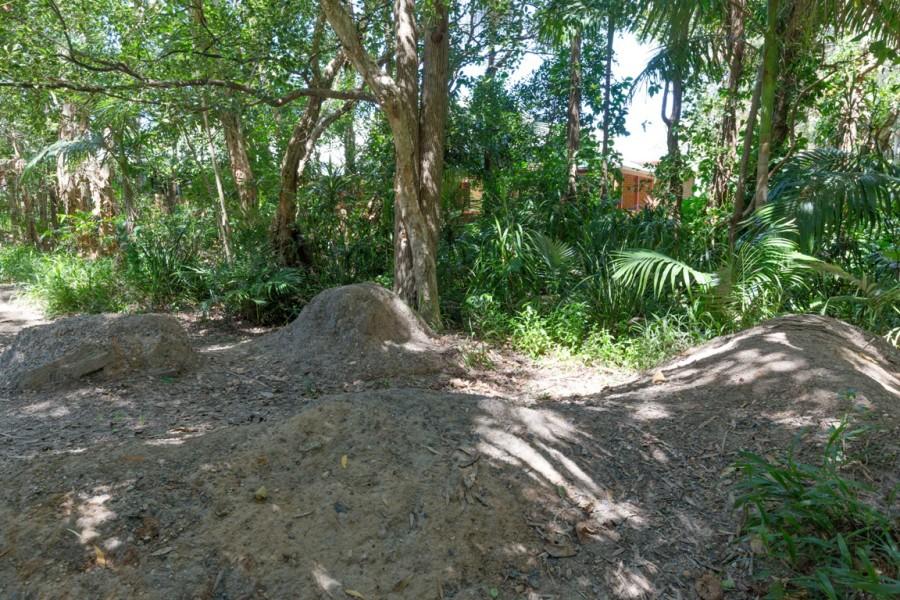 Bike Trail, Shelley Drive Reserve, Byron Bay