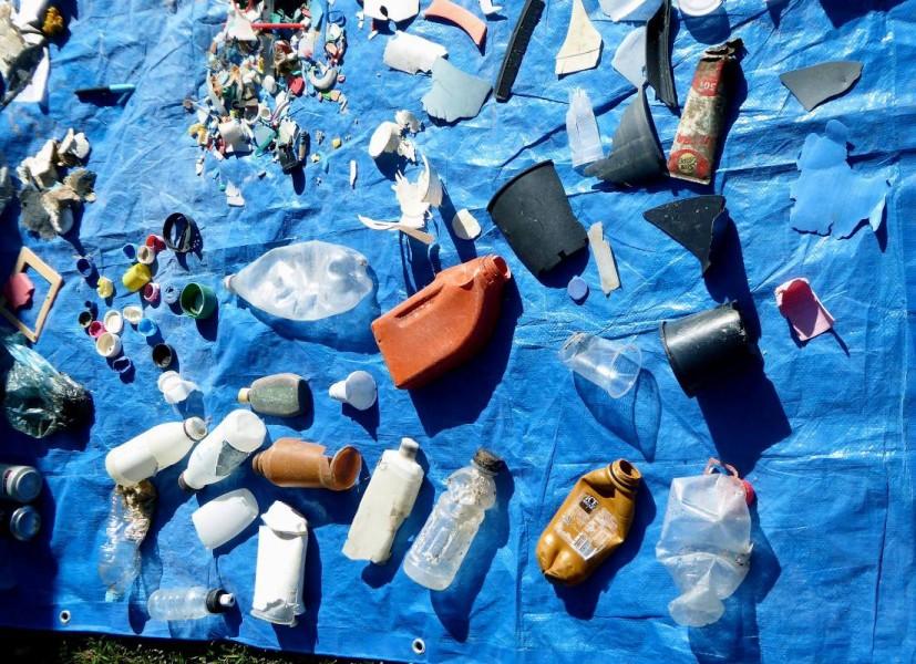 Australian Seabird Rescue - beach debris