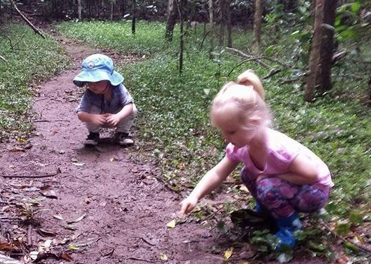 Booyong Nature Reserve - children's nature discovery