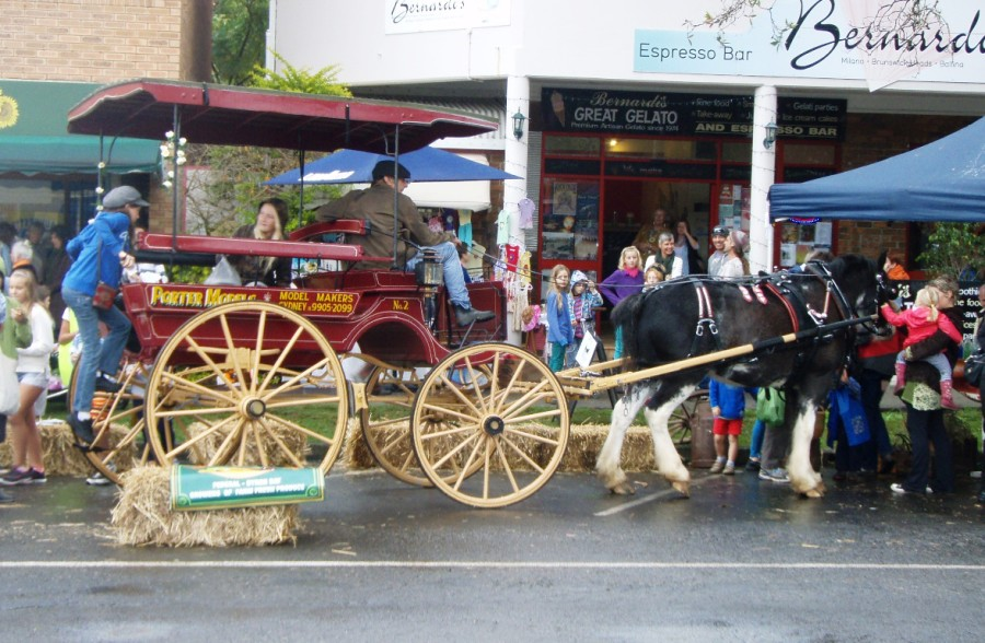 Old and Gold Festival, Brunswick Heads