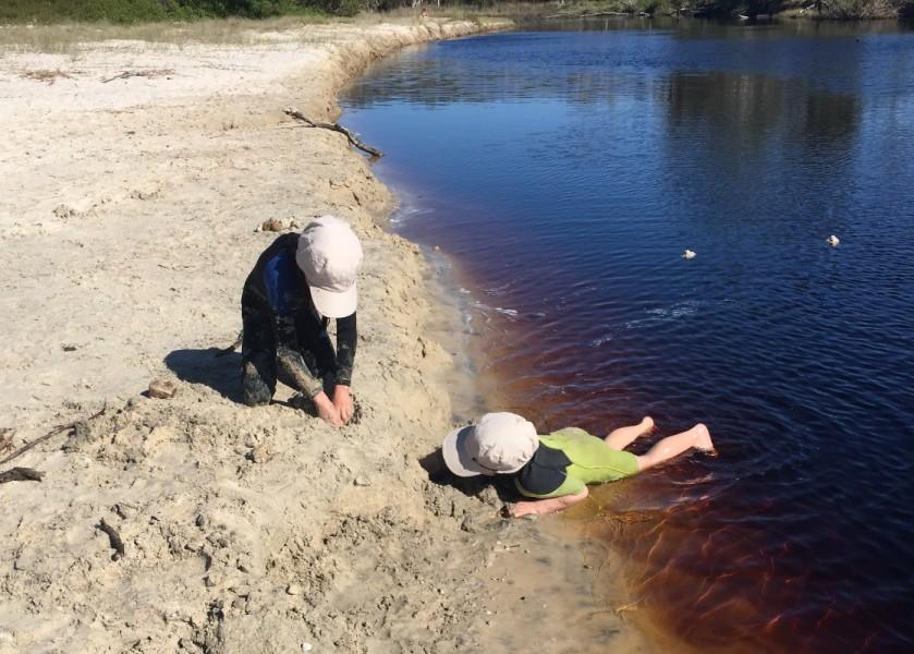 Bundjalung Ti-Tree Lake - Suffolk Park
