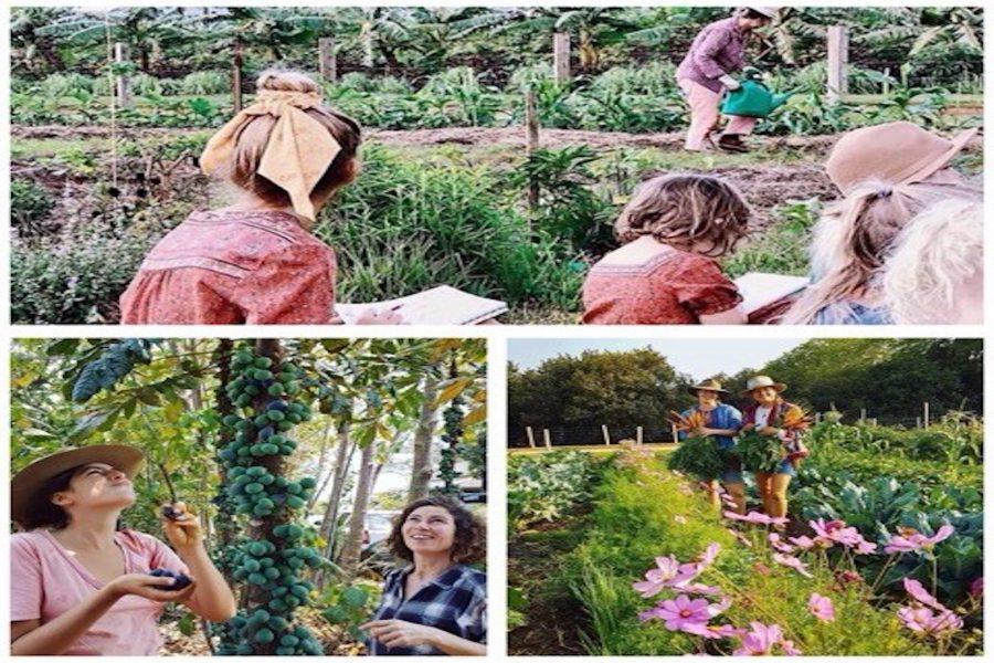 Farm Kids Home School Program, Byron Bay