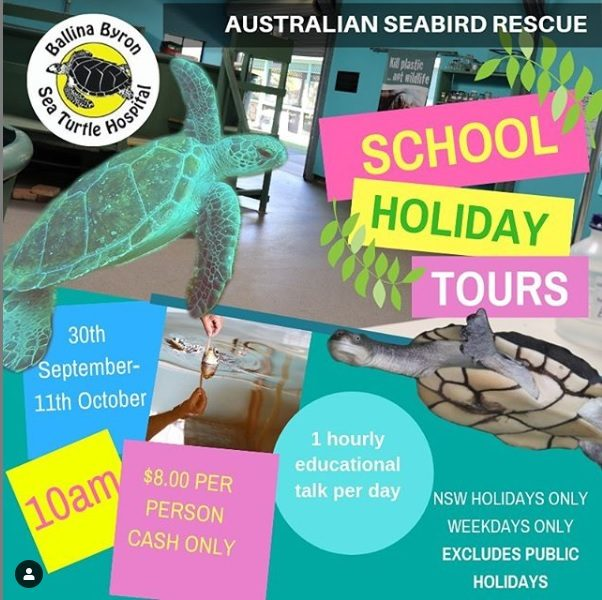 Australian Seabird Rescue School Holiday Tours