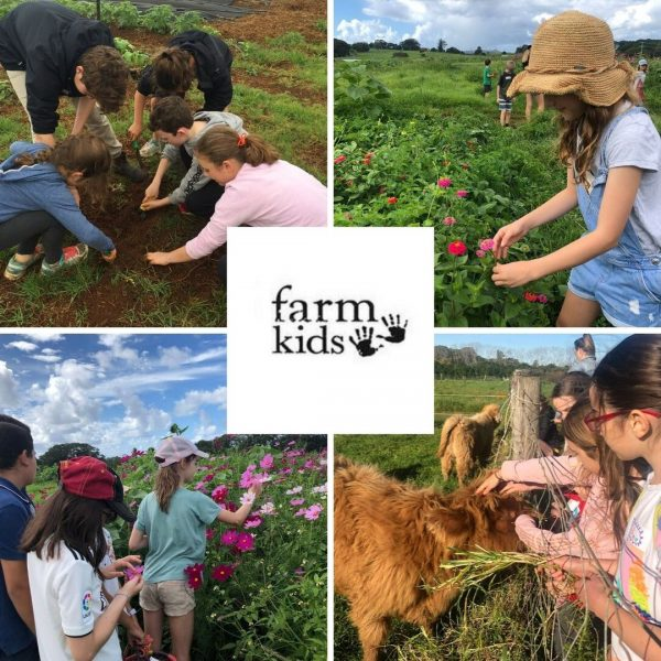 Farm Kids Byron Bay School Holiday Workshops