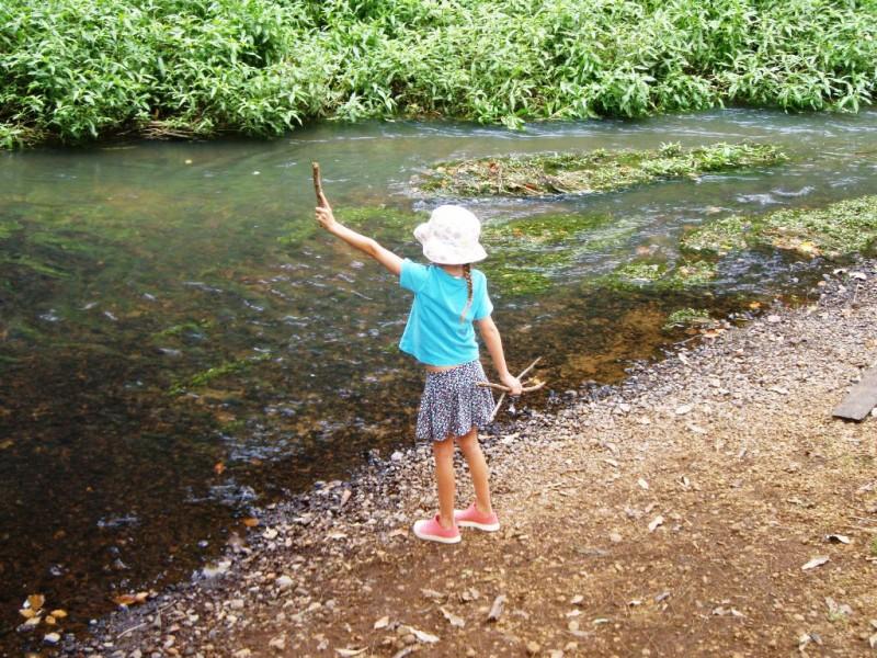 Byron Creek, Reserve Park, Bangalow