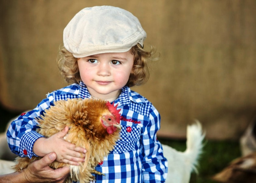 The Bangalow Show - boy with chook
