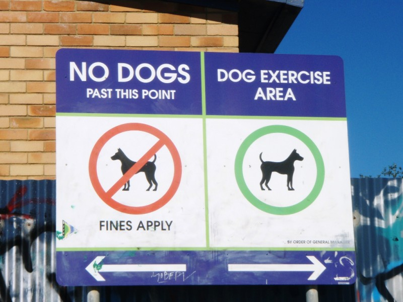 Belongil Beach Dog Signage