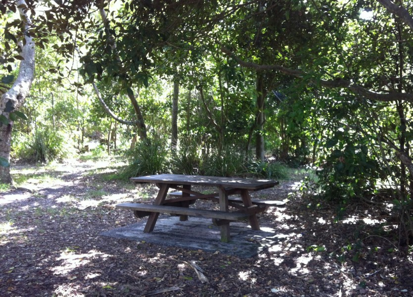 Picnic Table, Cosy Corner, Tallow Beach, Byron Bay