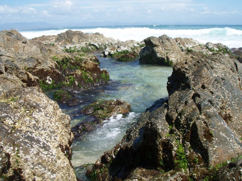 Rock Pools, Watgeos Beach, Byron Bay