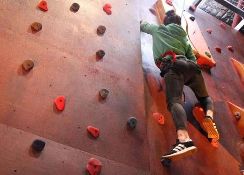 Circus Arts - Indoor Climbing Wall