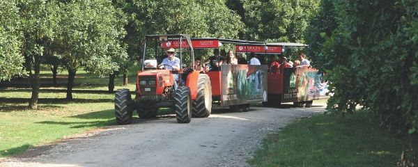 Summerland Farm Tractor Tour