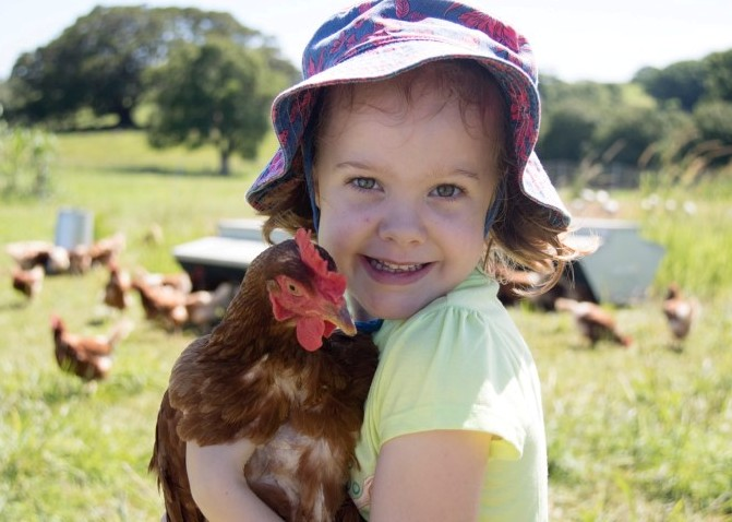 FarmKids Workshop - Chooks!