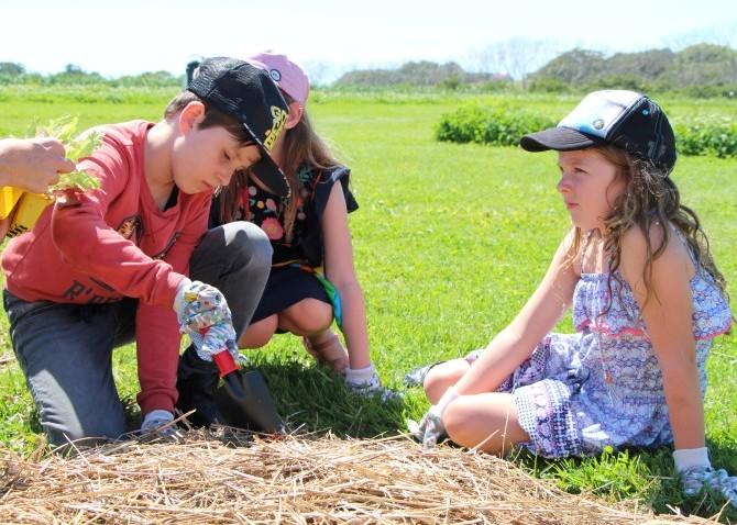 FarmKids Workshop - Planting