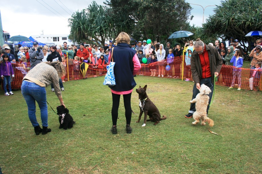Love Lennox Festival - Dogs of Lennox