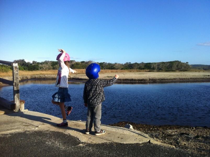 Tallow Creek Pathway, Suffolk Park