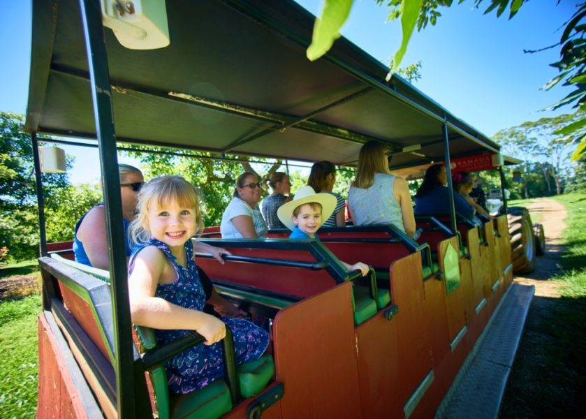 Summerland House Farm - Tractor Train Ride
