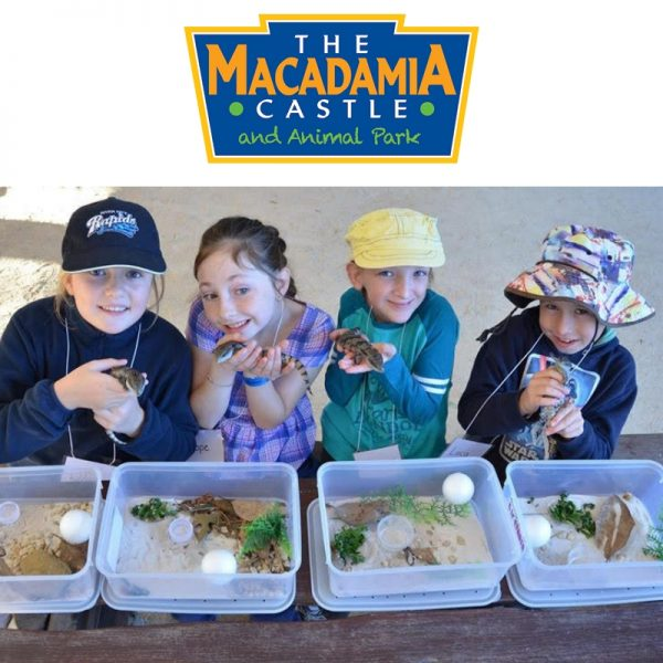 Macadamia Castle School Holiday Workshop